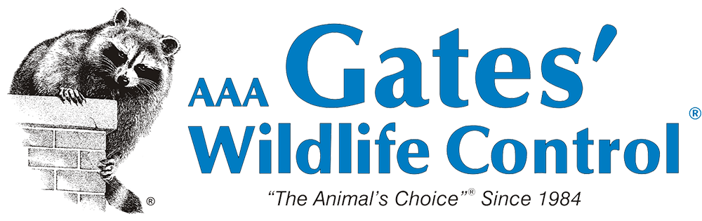 AAA Gates Wildlife Control - The Animals Choice