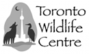 Toronto Wildlife Center