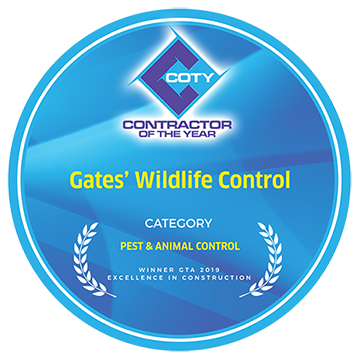 Pest & Animal Control Contractor Of The Year GTA 2019
